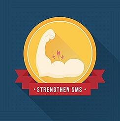 A_continuous_improvement_approach_to_strengthening_your_SMS.jpg